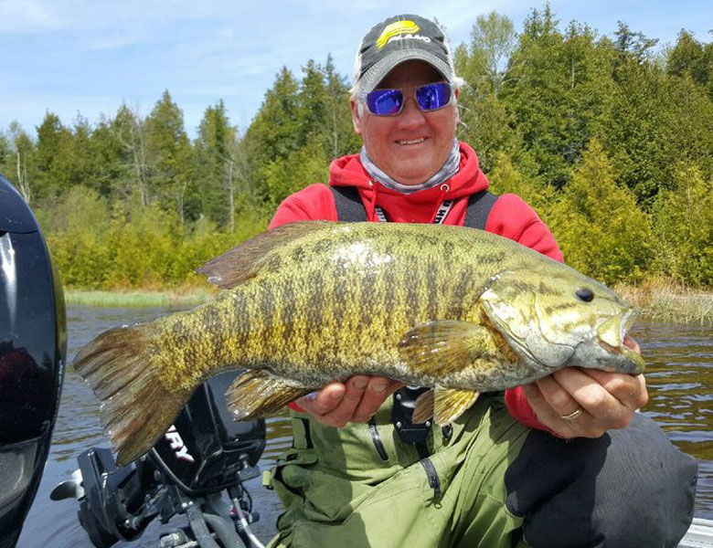 large spring door county smallmouth bass