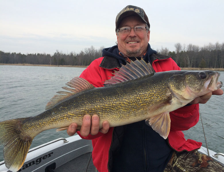 large walleye caught with green bay fishing guide